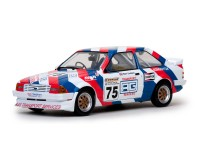 Sun Star 1/18 Ford Escort MkIII RS1600i n.75 British Touring Car Championship 88 modellino